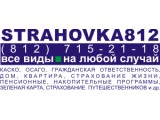 Логотип ПАЛАДИН, ООО
