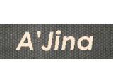 Логотип AJina