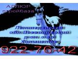 Логотип АЛЛЮР Стройбаза