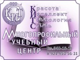 Логотип КИТС-Групп