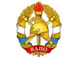Логотип ВДПО Василеостровского района
