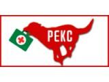 """Логотип Ветеринарная служба """"Рекс"""""""
