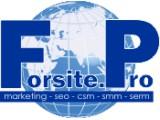 Логотип Forsite.Pro
