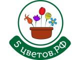 Логотип 5цветов
